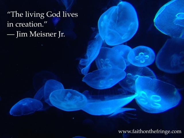 Living God in Creation