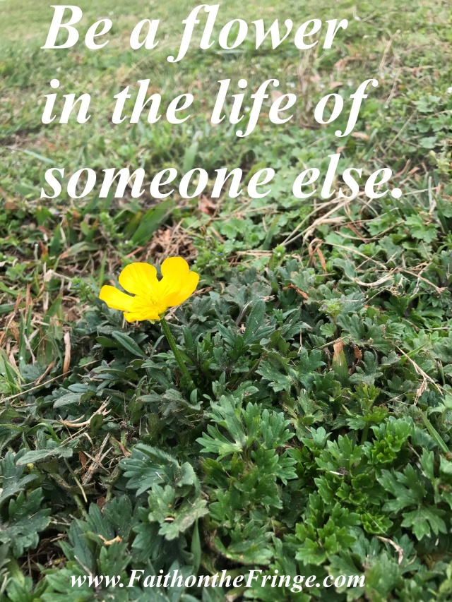 Be a flower in the life of someone else.